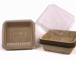 Eco-Friendly Food Packaging & Food Containers