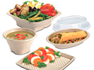 Great New Terrapac Fiber Takeout Containers and Fiber Catering Trays by Sabert